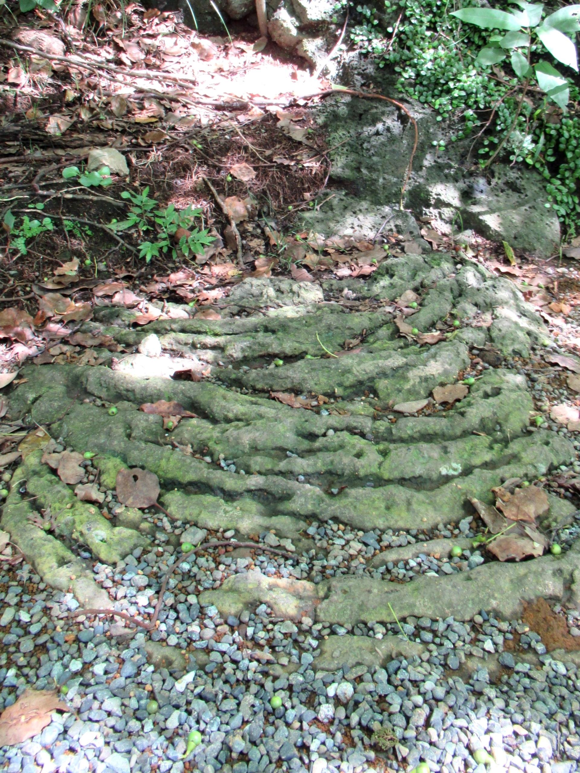 (15)縄状溶岩