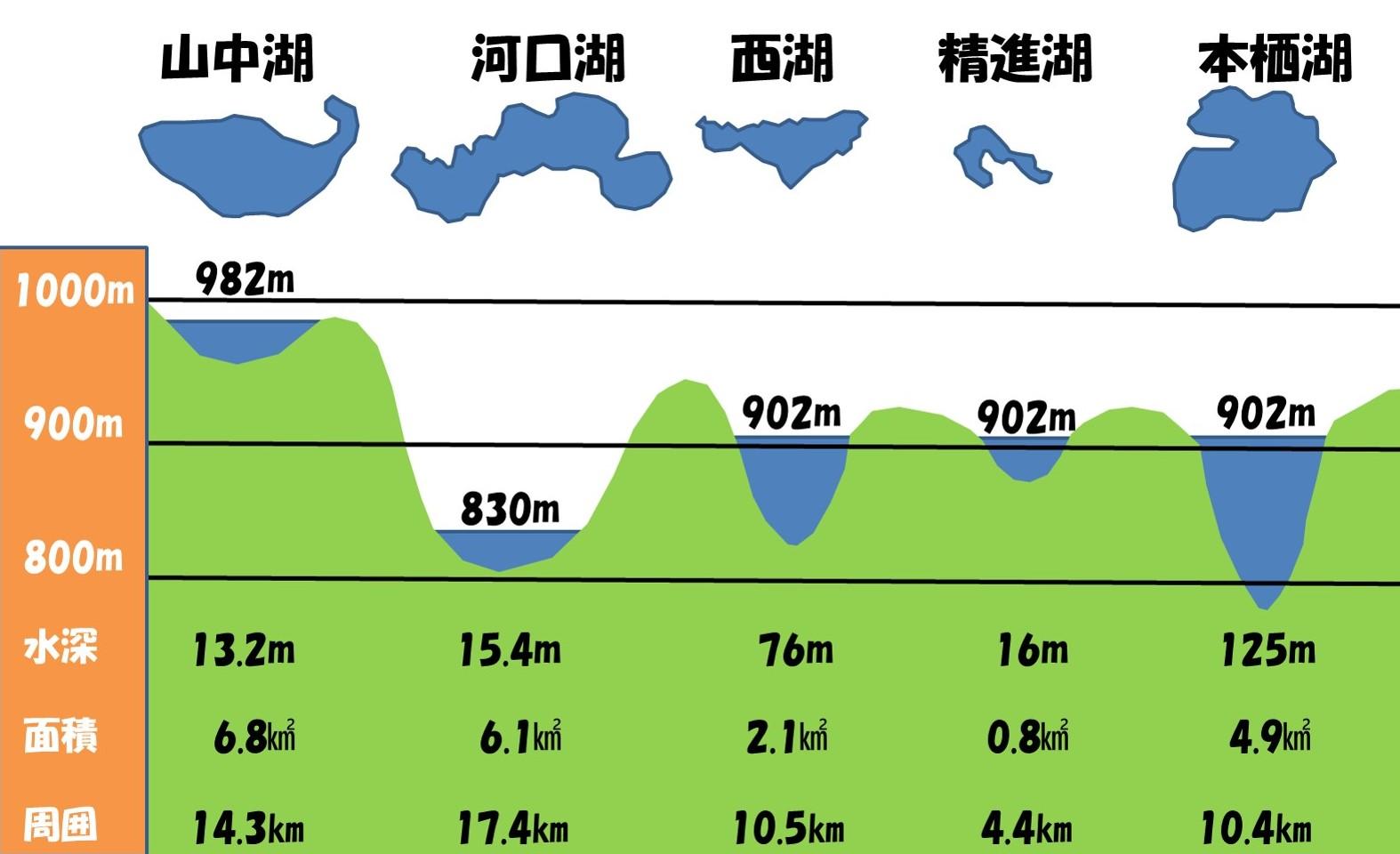 図8 富士五湖のデータ一覧